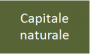wiki:capitale_naturale.png
