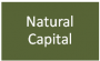 wiki:natural_capital.png